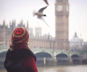 london, bird, and Big Ben image