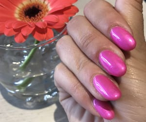 fuxia, nail, and nail art image