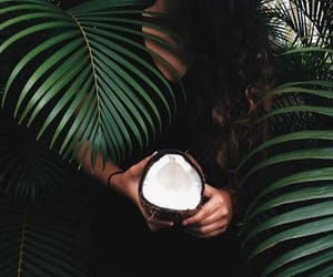 coconut, fruit, and girl image