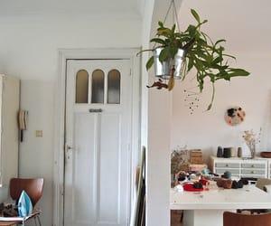 plants, white, and decor image