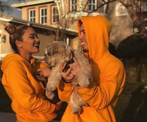 couples, yellow aesthetic, and puppies image