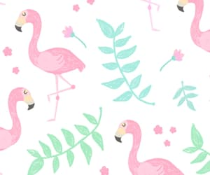 aesthetic, flamingo, and florals image