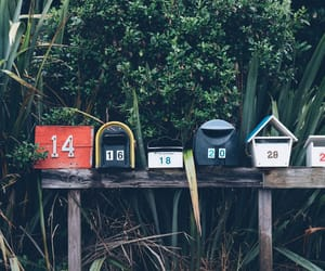 mailbox, tree, and postbox image