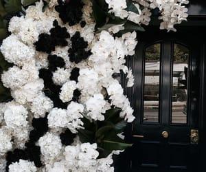 door, flowers, and indie image