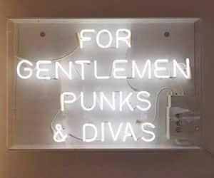 diva, light, and gentlemen image