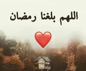 arabic, dzair, and ﺍﻟﺠﺰﺍﺋﺮ image