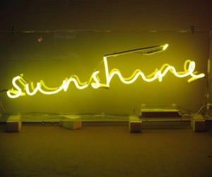 sunshine, yellow, and neon image