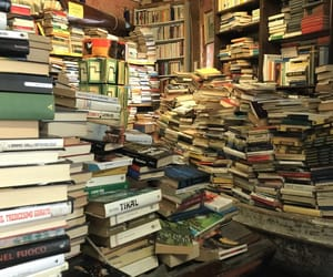 acqua, books, and bookshop image