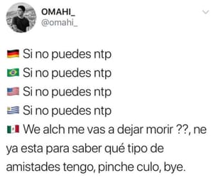 méxicanos image