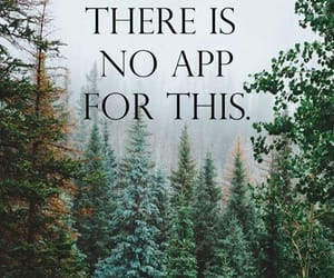forest and quotes image