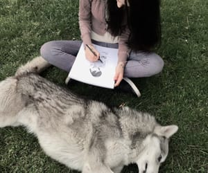 animal, art, and husky image