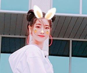 asia, bunny, and girl image