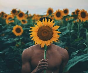 man, sunflower, and love image