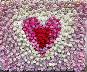 beautiful, flowers, and hearts image