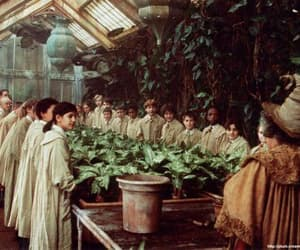 harry potter and herbology image