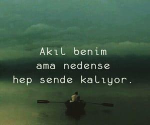 qoutes, tumblr, and turk image