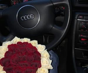 rose, red, and audi image