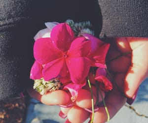aesthetic, flowers, and memories image