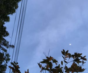 aesthetic, blue, and moon image