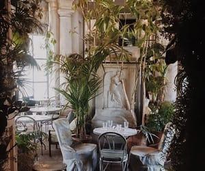 architecture, bar, and botanical image