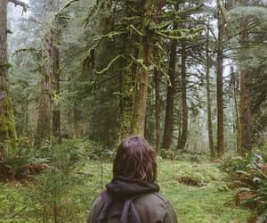 aesthetic, forest, and places image