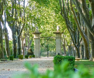 france, rentals, and provence image