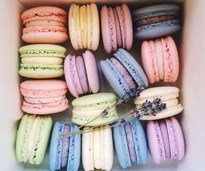 food, macaroons, and theme image