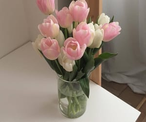 pink, white, and tulips image