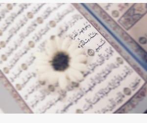 مصحف, حُبْ, and قراّن image