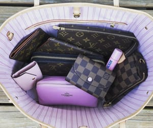 bag, key holder, and Louis Vuitton image
