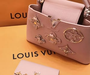 Louis Vuitton, luxury, and purse image