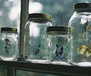 flowers, jar, and vintage image