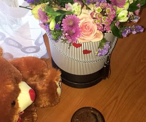 bear, couple, and flower image
