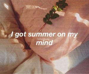 summer, aesthetic, and quotes image