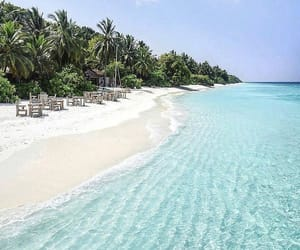 awesome, beach, and enjoylife image