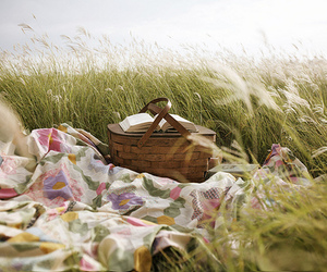 picnic, book, and nature image