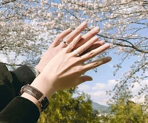 couple, hands, and korean image