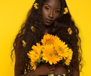 yellow, beautiful, and flowers image