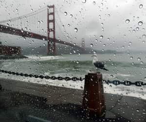 rainy day, san francisco, and usa image