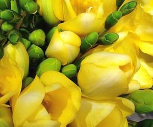 Yellow https://www.instagram.com/p/1H-L4elJr0/
