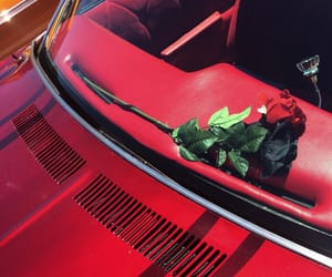 aesthetic, cars, and the 1975 image