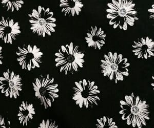 flowers, black, and wallpaper image