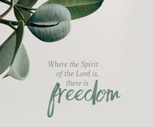 god, freedom, and love image