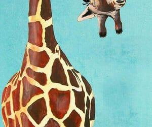 giraffe, wallpaper, and animal image