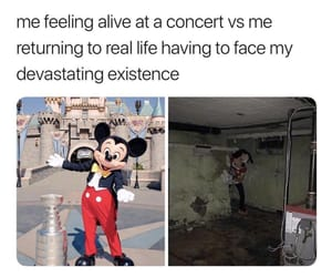 concerts, funny, and humor image