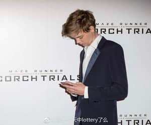 beautiful, newt, and sangster image