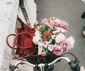 flowers, bike, and bag image