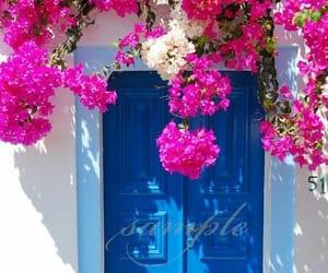flowers and door image