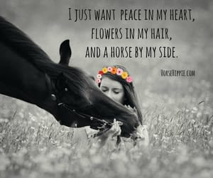 flowers, horses, and quotes image