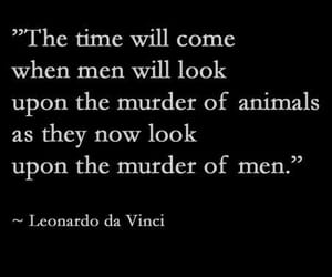 Leonardo da Vinci, quotes, and vegan image